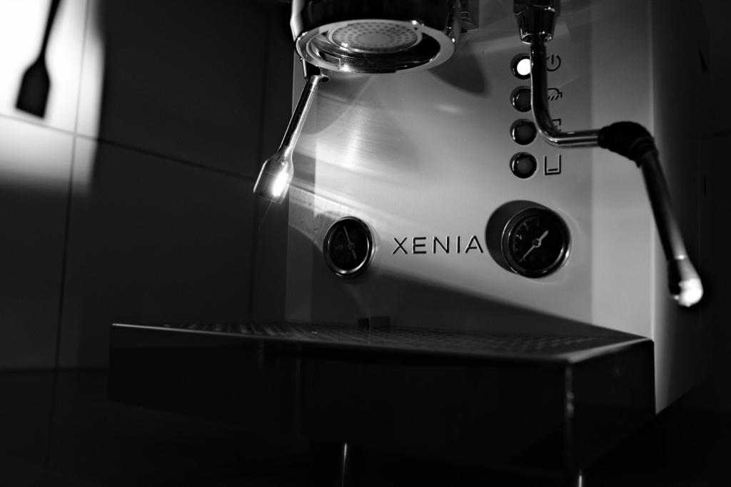 20190209 Xenia - 002.jpg