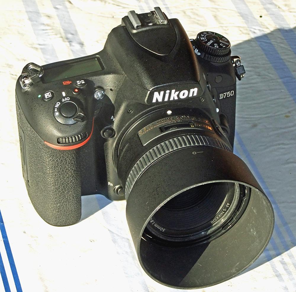 nikon D 750 - Normalo.jpg