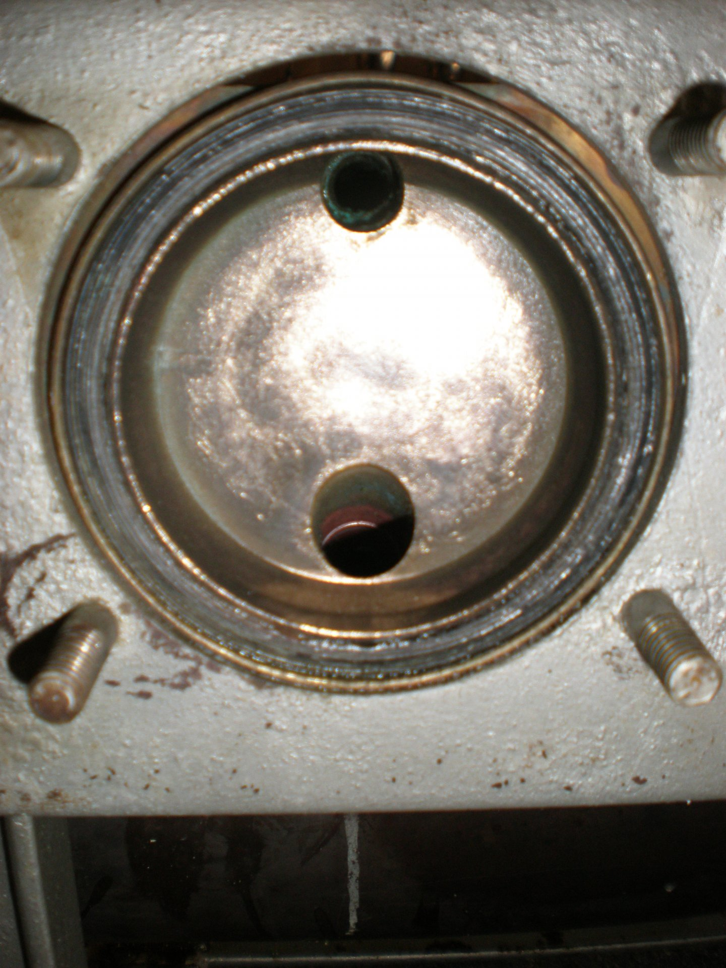 P5180025.JPG