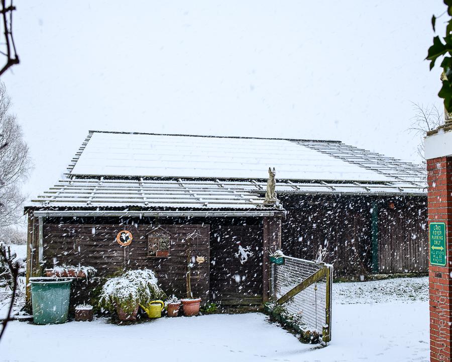 Schnee 1.jpg